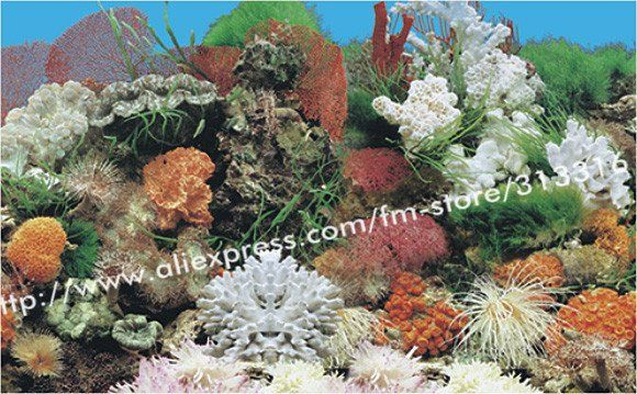 ==> [Free Shipping] Buy Best Free shippingNEW 15 meters/roll Aquarium Decorations background Fish Tank Plastic Background picturefish decoration Online with LOWEST Price | 468529040