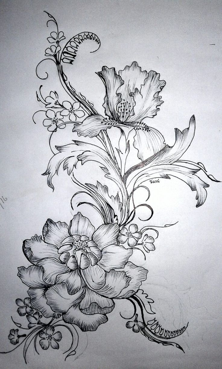 Flower design,, Pencil drawing ***