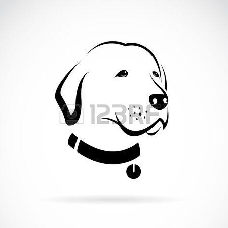 1000 id es sur le th me labrador blanc sur pinterest - Dessin tete de chien ...