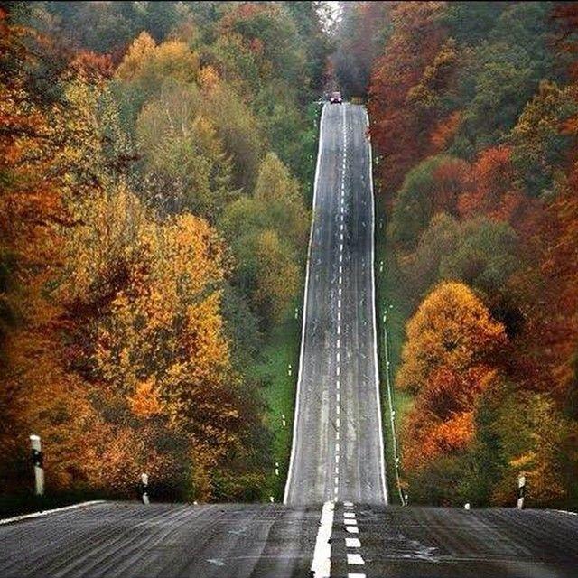 Herkesin izleyecek bir yolu vardır. O yol genişler, daralır, yokuş olur, çıkar, sonra iner. #Çaresiz ve #umutsuz gezinmelerin olduğu zamanlar olur. Ama #cesaret dolu bir #kararlılık ve #inanç sayesinde, #doğruyol bulunacaktır. http://ibretlikhikaye.com/2014/10/14/herkesin-izleyecek-bir-yolu-vardir-o-yol-genisler-daralir-yokus-olur-cikar-sonra-iner-caresiz-ve-umutsuz-gezinmelerin-oldugu-zamanlar-olur-ama-cesaret-dolu-bir-kararlilik-ve-inanc-sayesind/