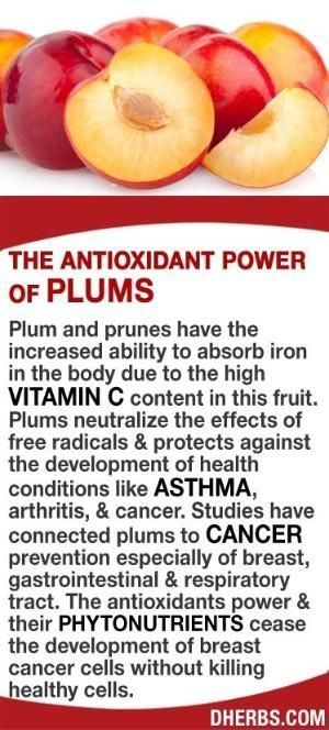 Plum and prunes have the increased ability to absorb iron in the body due to the high vitamin C content in this fruit. Plums neutralize the effects of free radicals & protects against the development of health conditions like asthma, arthritis, & cancer.