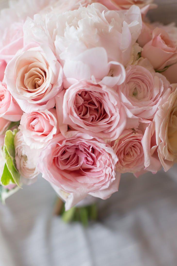 250 best Flowers | Wedding images on Pinterest