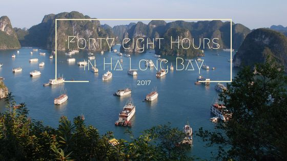 A forty-eight-hour guided tour to the beautiful Ha Long Bay in Vietnam. From choosing a cruise to excursions to Dao Di Top Island and Bamboo Boats.