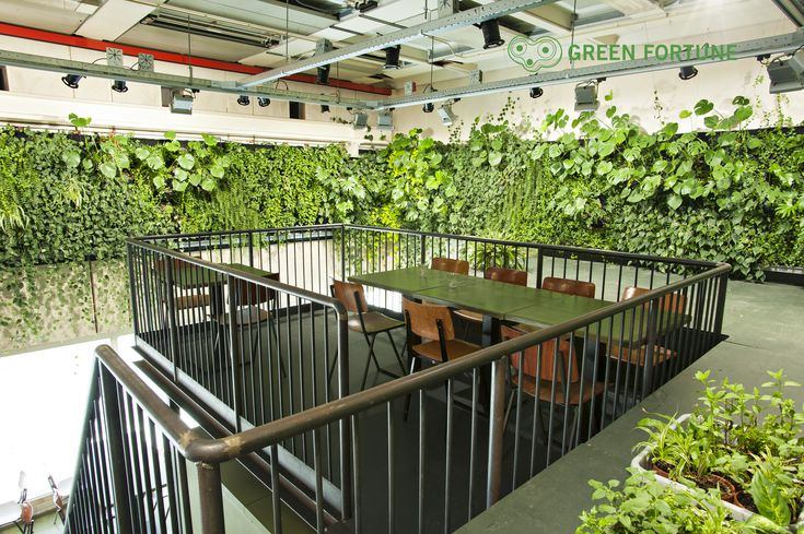 Green Fortune plantwall / vertical garden in restaurant, food retail.