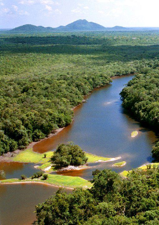 Roraima - Parque Viruá/rio Viruá - Caracaraí Brasil TaylorNunes