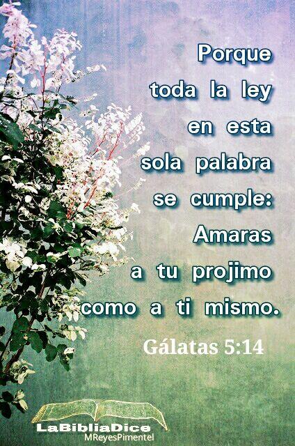 LaBibliaDice: Galatas 5:14. Aquí la ley fue reducida al mínimo común denominador