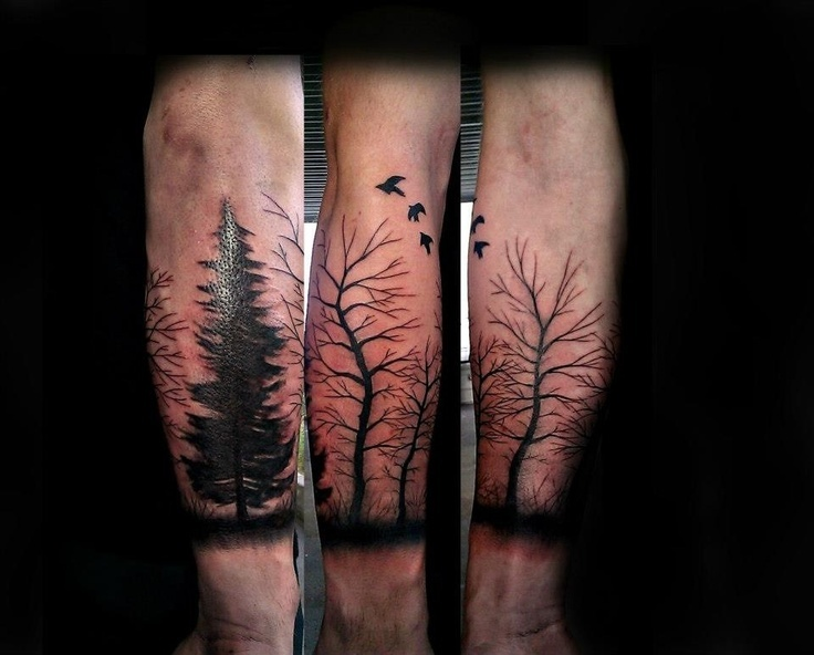 free hand half sleeve trees done by aaron carey of ink daddys in salem oregon tatuajes. Black Bedroom Furniture Sets. Home Design Ideas