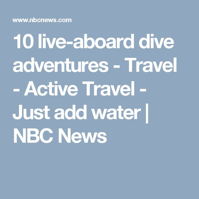 10 live-aboard dive adventures - Travel - Active Travel - Just add water | NBC News