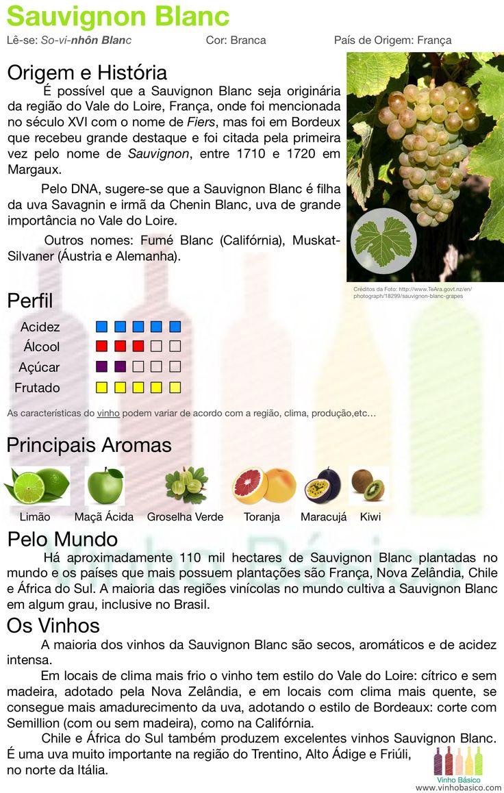 Sauvignon Blanc: características, aromas e estilos de vinhos.