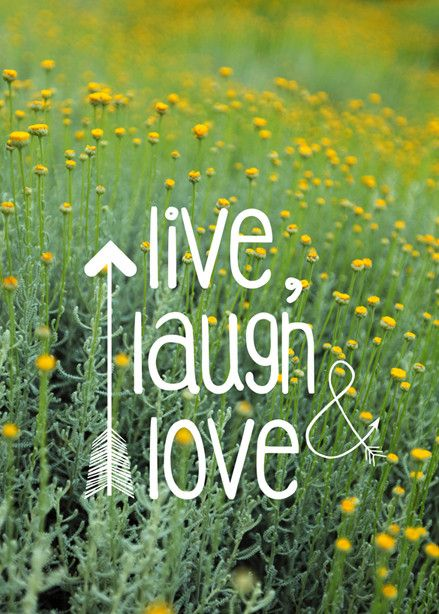Field Quotes: Live Laugh Love Wall Art from Artifax