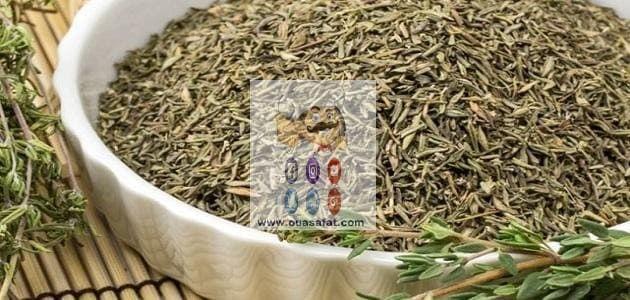 فوائد واستخدامات الزعتر How To Dry Basil Herbs Dried