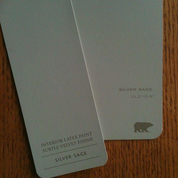 Instagram Silver Sage Comparison  Paint Colors in 2019  Silver sage paint Bedroom paint