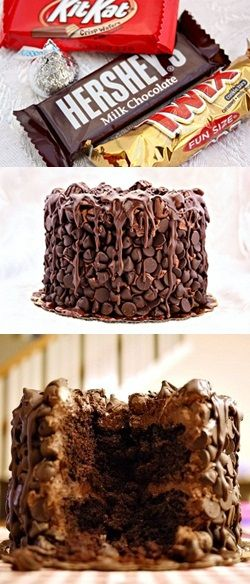 Chocolate Wasted Cake. They should call this the Chocolate Suicide dessert! ;)