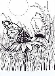 36 best Adult Coloring Pages images on Pinterest | Adult ...