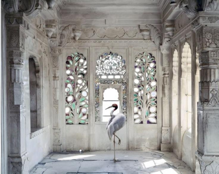"""Διεθνή Βραβεία Φωτογραφίας 2012: India Song"""", 3ο βραβείο στην κατηγορία Καλές τέχνες, από την Karen Knorr"""