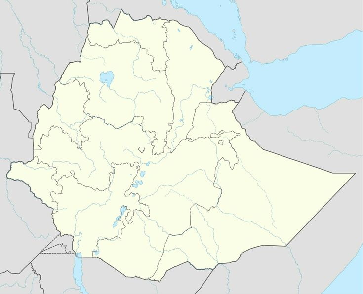 Oromo people  For the language, seeOromo language.  TheOromo people(Oromo:Oromoo;Ge'ez:ኦሮሞ;'Oromo) are an ethnic group inhabitingEthiopiaand parts ofKenyaandSomalia.[6][7]They are the largest ethnic group in Ethiopia and the widerHorn of Africa. According to the 2007 census,[1][8]they represent approximately 34.5% of Ethiopia's population, while others estimate they make up about 40% of the population.[7][9]With the total Ethiopian population thought to be over 102 million…