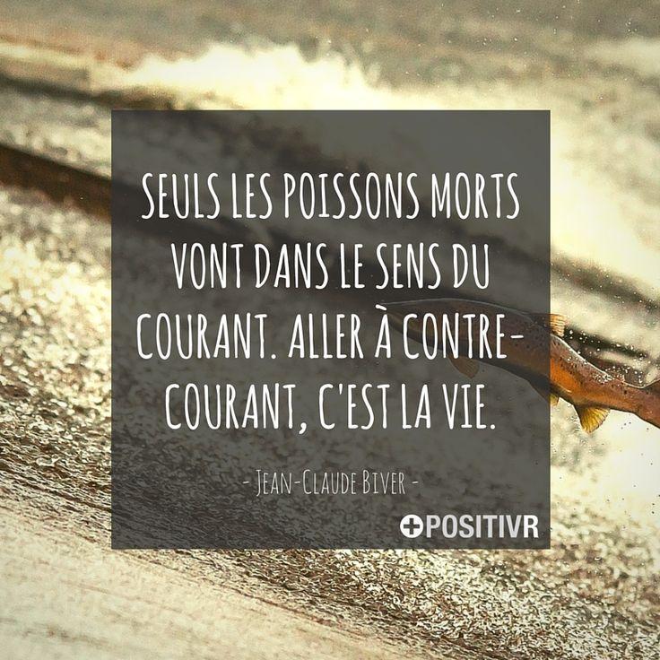 """""""Seuls les poissons morts vont dans le sens du courant. Aller à contre-courant, c'est la vie."""" Jean-Claude Biver #contrecourant #vie #citation #citations #france #quote #followme"""