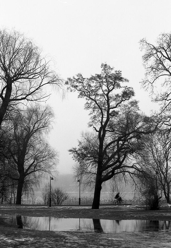 2014_Feb_Töölönlahti_Nikon-FA_Nikkor-50mm_Adox-CHS-25__001