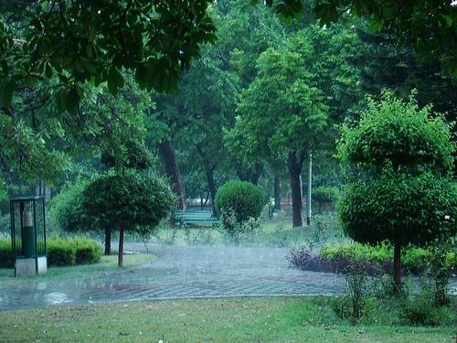 It rained......