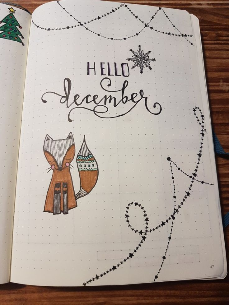 Love this foxalicious opening to December ❤️