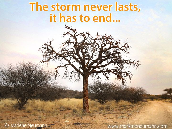 The storm never lasts, it has to end... Inspirational quotes by Marlene Neumann. Photographer, teacher, author, philanthropist, philosopher. Marlene shares her own personal quotations from her insights, teachings and travels. Order your pack of Inspirational Cards! www.marleneneumann.com