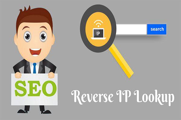 Reverse Ip Lookup Ip Shared Hosting Lookup Web Hosting Services Seo Tools Hosting Services
