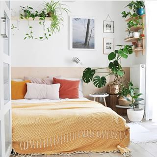 Find This Pin And More On Plants :: Bedroom By Opus Grows.