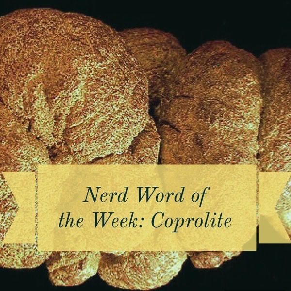 Nerd Word of the Week: Coprolite ~ a piece of fossilized dung. As in: In some circles, pond slime is a delicacy and coprolite is made into jewelry.