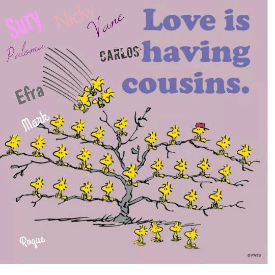 Crazy Cousin Birthday Quotes: I Love My Cousins!