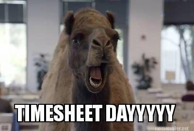 Meme Maker - TIMESHEET DAYYYYY Meme Maker!