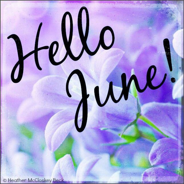 JUNE Hello June purple flowers