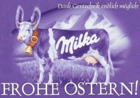 Milka steckt auch überall