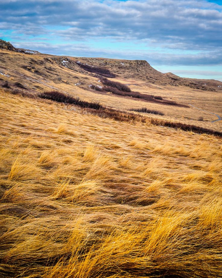 Located South of Calgary, Head Smashed In Buffalo Jump is a UNESCO world heritage site where First Nations Peoples hunted buffalo for over 5000 years. The beauty and serenity of the place are absolutely incredible.