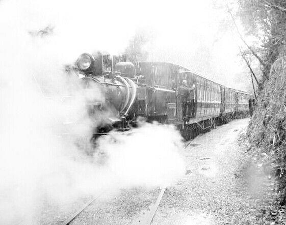 West Coast Wilderness Railway....