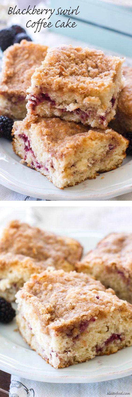 This Blackberry Coffee Cake recipe is a simple yet elegant addition to any breakfast, brunch, or afternoon coffee break! It's light, fluffy, filled with a blackberry puree, and topped with a sweet bro (Coffee Cake)