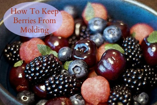 how to keep fresh strawberries fresh longer