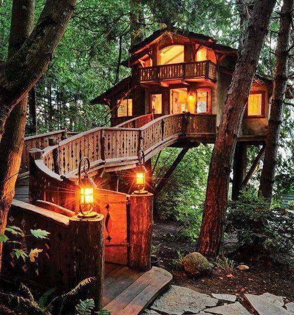 Case sull'albero illuminate in mezzo alla natura.