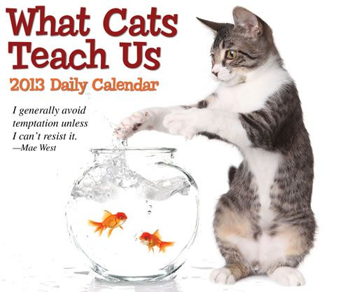 What Cats Teach Us 2013 Boxed Calendar 57142
