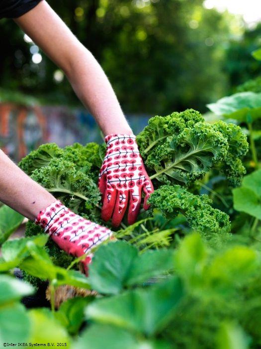 Unele sâmbete sunt numai bune pentru relaxare în grădină. www.IKEA.ro/manusi_gradinarit_KRYDDNEJLIKA