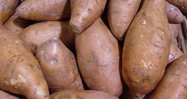 La Patate douce, composition et bienfaits nutritionnels. Restez motivé ! Connectez-vous sur moncoach.com