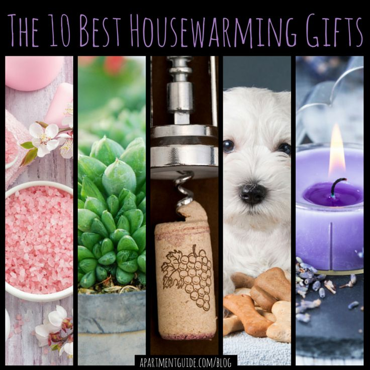 Don't go to a housewarming party empty handed! Take a look at these 10 best housewarming gifts you should consider bringing.