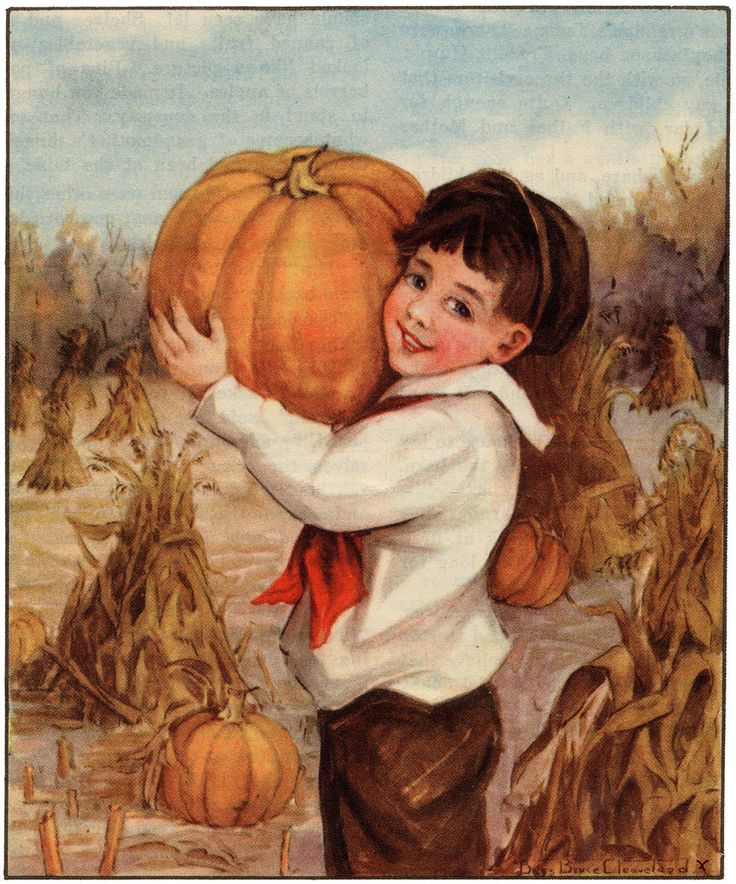 harvest...: Beautiful Autumn, My Sons, Illustration, Sons Jack, Ie308 Boypumpkin Jpg 999 1200, Autumn Harvest, Vintage Autumn, Sweet Harvest, Ie308 Boypumpkin Jpg 999 1 200