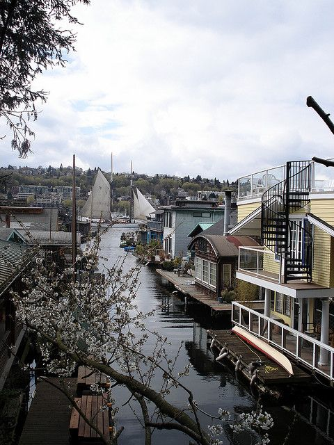 Houseboats And Sailboats On Eastlake, Seattle, Washington