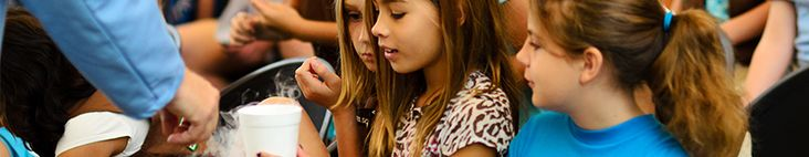 Great list of STEM curriculum resources from TechBridge!