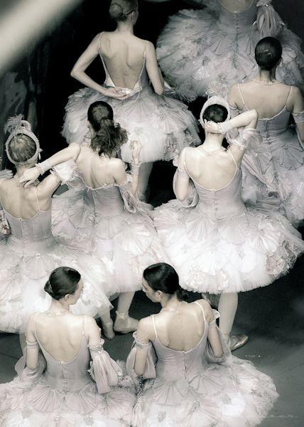 Swans after presentation. .♥ www.thewonderfulworldofdance.com #ballet #dance. #Ballet_beautie #sur_les_pointes *Ballet_beautie, sur les pointes !*
