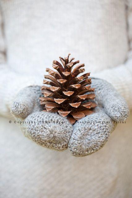 < winter mittens >