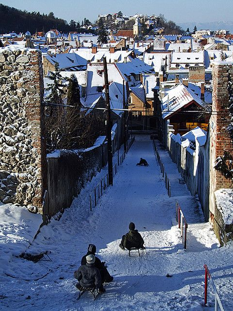 Snow Sledding, Brasov, Romania  photo via danielle