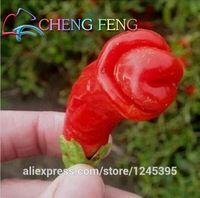 100 единиц / пакет садовых растений паприки Peter Pepper Red Hot Chili семян овощей Оформление интерьера бесплатная доставка горшки на открытом воздухе