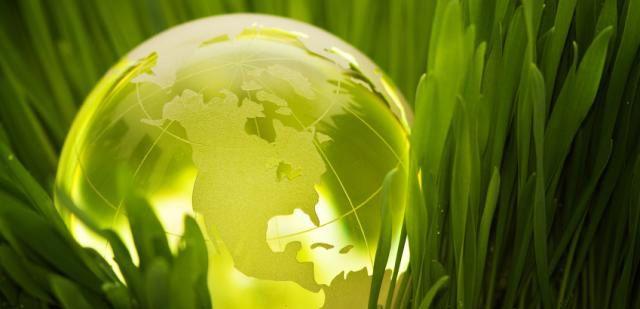 Carbon Taxes around the world.