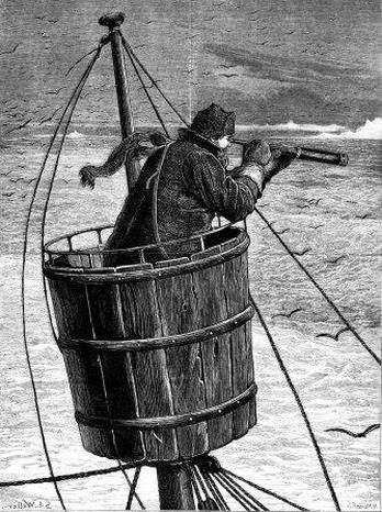 Source      Source    When navigating the seas, Vikings used crows as navigational equipment. Crows are land lovers, and when the we...